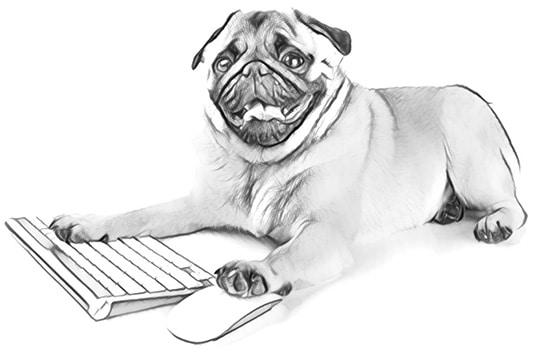 Designing websites to convert